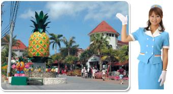 南国フルーツパイナップルを見て・触って・味わえるテーマパーク